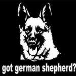 got German Shepherd Decals